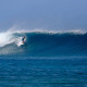 Surf Fiji Long Frigates Left
