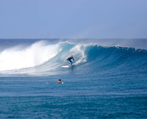 Surfing in Fiji Frigates Fun
