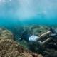 Fiji Activities Snorkel Waidroka