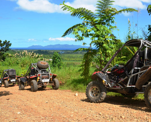 Fiji Terratrek Buggy Fun