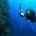 Fiji Dive Deep Walls