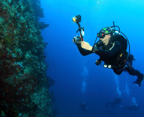 Fiji Dive Deep Walls