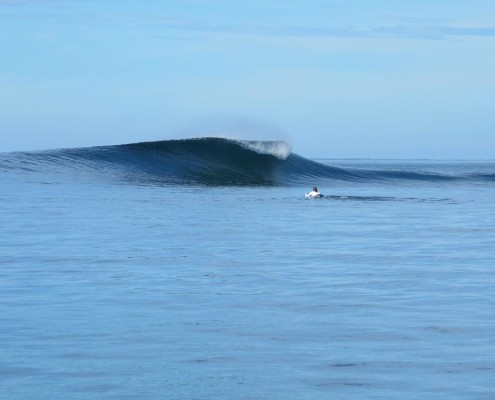 Fiji Surf Resort Shifties Clean and Glassy Peaks