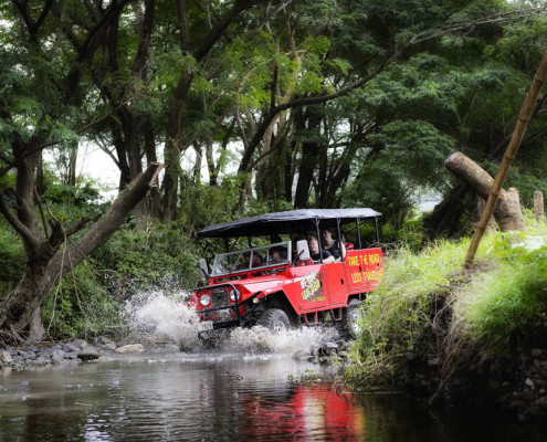 Jeep Fiji Safari