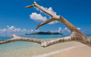 Fiji Island Resort Birds Island Excursions