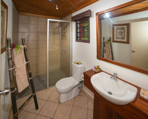 Resort Fiji Superior Bathroom