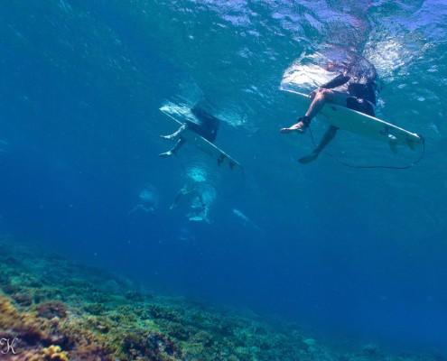 Surf Fiji underwater